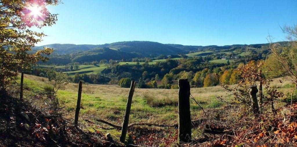 plateau-de-millevaches-vtt.jpg