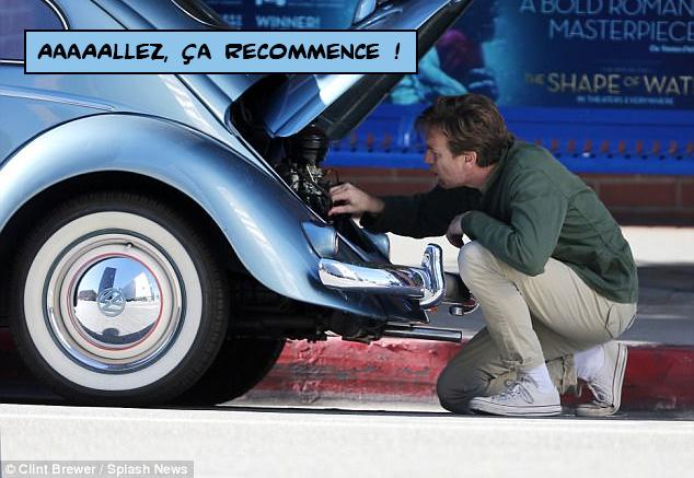 mcgregor_beetle1.jpg