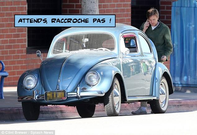 mcgregor_beetle3.jpg